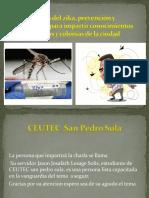 El Virus Del Zika, Prevención y Tratamiento