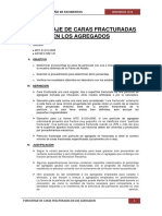 Informe 1 Caras Fracturadas