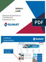16.09.26_Panilla-Electronica.pdf