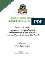 Pg-recuperacion de Licuables en Rio Grande (Jan12)