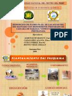 DIAPOSITIVAS BIOSORCION DE Pb(II) CON CASCARA DE NARANJA.ppt