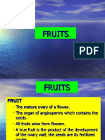 9) FRUITS