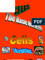 Cell Biology 2
