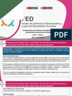 FED_Compromisos de Gestión vinculados a la_Salud_Fase1-Nivel3.pdf