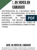 Lote en Venta en Caranavi