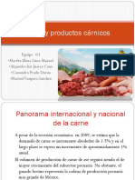 Carne y Productos Cárnicos
