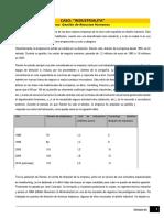 Lectura - Caso insdustrialita.pdf