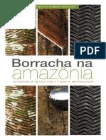 História da Amazônia.pdf