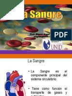 J-CLASE 14 y 15 -_SANGRE.pdf