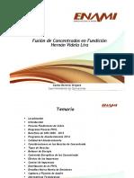 01.- Fusion de Concentrados en Fundicion Hernan Videla Lira