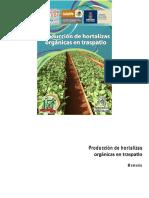 Producción de Hortalizas Orgánicas en Traspatio