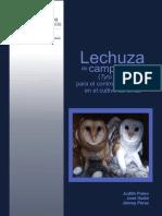 Lechuza_campanario