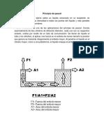 FISICALIBRO (1).docx