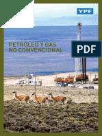 2._petroleo_y_gas_no_convencional.pdf