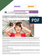 Investigadores Españoles Descubren El Mecanismo Que Explica Los Fallos en La Memoria en Situaciones de Estrés - InVDES