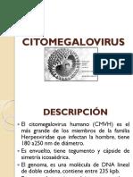 52189712-CITOMEGALOVIRUS.pptx