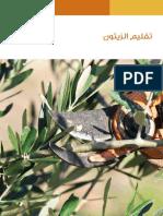 Olive_trim.pdf