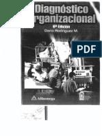 Diagnostico Organizacional Dario Rodriguez
