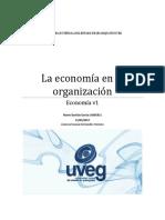 Mario_Bastida_La Economia en La Organizacion