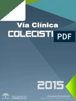 Via_Clinica_CA_2_Junio_2016 (1).pdf