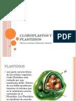 cloroplastosyotroplastidios