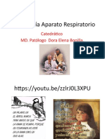 Embriologia Aparato respiratorio