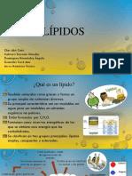 Biologia lipidos