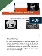 01 Imagenologia veterinaria-Radiologia 01.pdf