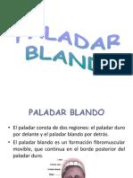 paladar blando glandulas s y diente.pptx