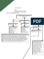 Actividad 5  Estructura y Funcion Celular