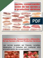 168731304-Contaminacion-Conservacion-y-Alteracion-De-Las-Carnes-Diapositivas.pptx