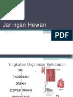 Jaringan Dan Organ Hewan Versi Nasir