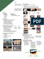 Protesis Parcial Fija