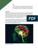 7 Vitaminas Para El Cerebro