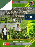 Folleto - Camaras Termicas Para Plantaciones de Platanos