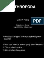 0 Arthropoda