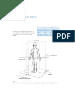 Anatomie Van de Heup