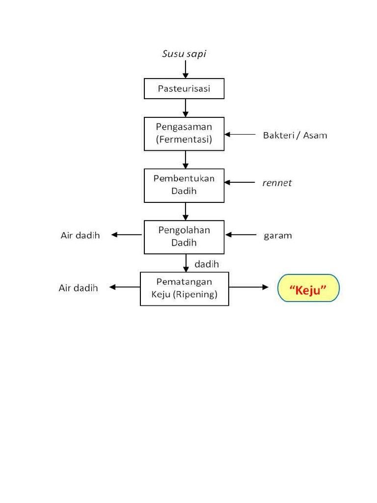 Diagram alir pembuatan keju 1534215771v1 ccuart Gallery