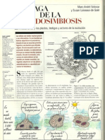 Endosimbiosis