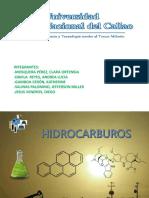hidrocarburos-1pptx2
