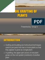 Grafting EPP