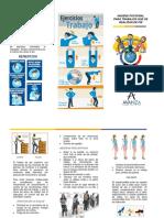 Folleto Manual de Manipulacion de Cargas e Higiene Postural (de Pie)