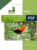 3.Plan de Accion Ambiental Local Nc