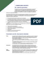 COMENTARIO ESCRITO Procedimientos Detallados