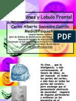 Adicion y Lobulo Frontal