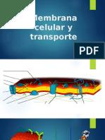 Membrana y Transporte.