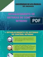 Establecimiento de Sistemas de Control Interno