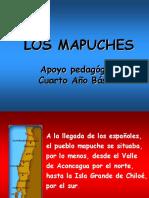 losmapuches4