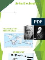 Teoría de La Evolucion