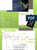 Nucleic Acids.structure and Function 2013